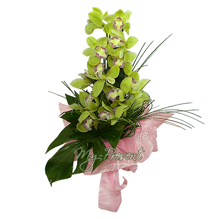 Орхидея в Лондоне