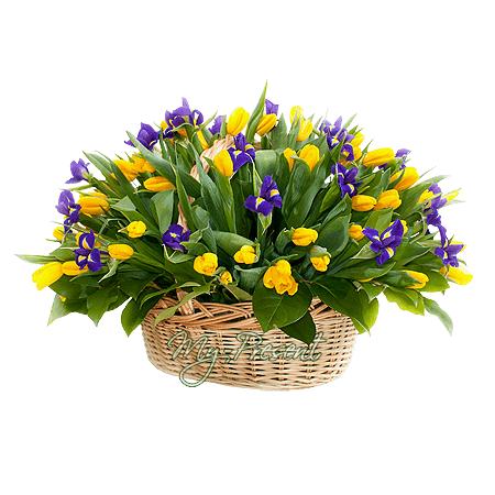 Корзина с тюльпанами и ирисами