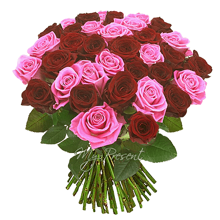 Букет из красных и розовых роз  (60 см)