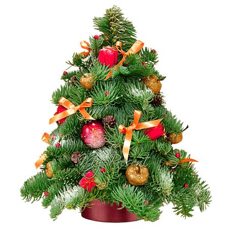 Новогодняя композиция в форме елки